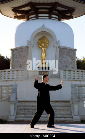 PICTURE CREDIT DOUG BLANE Doug Blane practising Tai Chi Chaun martial arts form Taoism meditation in motion at Milton - Stock Photo