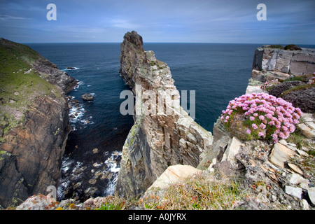 The Anvil -Tory Island, Co. Donegal  Ireland. - Stockfoto
