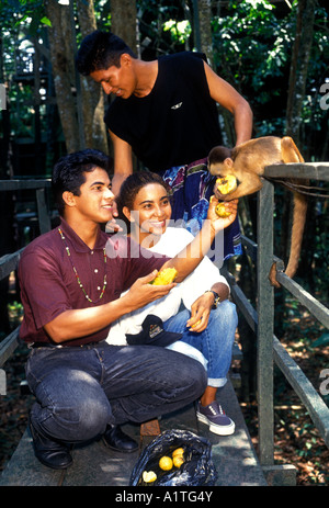 Brazilians, young man, tour guide, teenage girl, feeding Capuchin monkey, Capuchin monkey, Ariau River, west of - Stock Photo