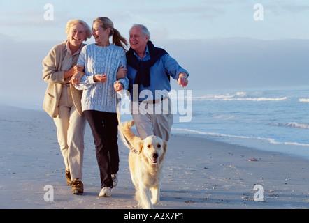 Free Dog Walking In Chepstow