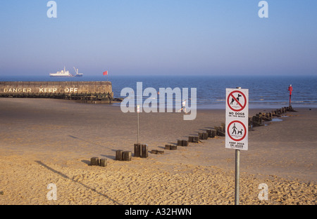 Summer evening seaside scene with sandy beach stone jetty merchant ship swimmers man jogging and Danger and No dogs - Stock Photo
