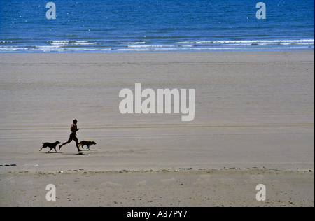 Man running on beach with two dogs Rest Bay Porthcawl Wales UK - Stock Photo