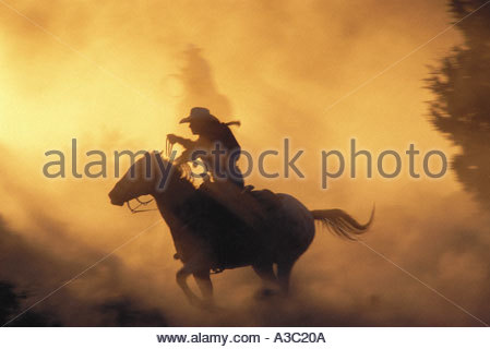 Silhouette of woman cowboy with lasso galloping on horseback in dusty yellow twilight with horses in Bend Oregon - Stock Photo