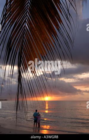 Sunset Negril Jamaica Focus on leaf couple soft focus - Stock Photo