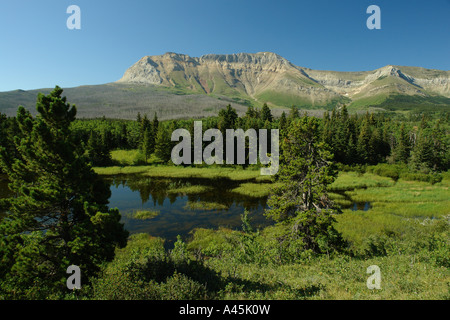 AJD56707, Waterton Lakes National Park, Alberta, Canada, Rocky Mountains, Sofa Mountain, Chief Mountain International - Stock Photo