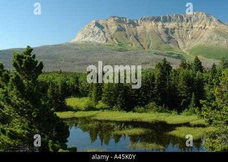 AJD56708, Waterton Lakes National Park, Alberta, Canada, Rocky Mountains, Sofa Mountain, Chief Mountain International - Stock Photo