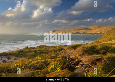 the entrance to Hokianga Harbour from the Arai Te Uru headlands on the wild west coast of the North Island New Zealand - Stock Photo