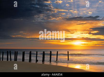 Sunrise, St. Clair Beach, Dunedin, New Zealand - Stock Photo