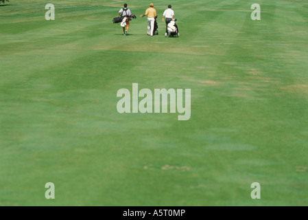 Golfers walking across golf course, rear view - Stockfoto
