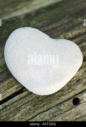 Pebble on wood, close-up - Stock Photo