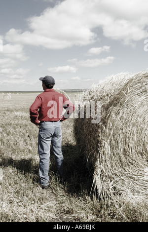 dating for farmers canada Join the largest christian dating site sign up for free and connect with other christian singles looking for love based on faith.