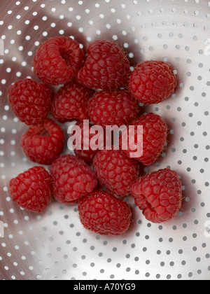 Raspberries in shiny steel colander - high end Hasselblad 61mb digital image - Stock Photo