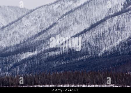 Sincline Ridge Burn - Stock Photo