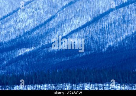 The Sincline Ridge Burn - Stock Photo
