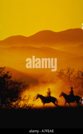 Silhouette of two cowboys on horses heading home at sunset - Stock Photo