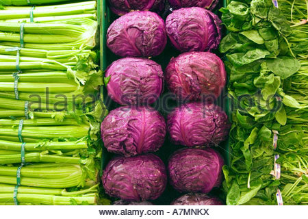Selection of green leaf vegetables celery and red cabbages on display on stall close up full frame - Stock Photo