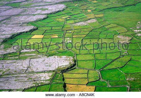 Fields on Inishmore, the largest of the Aran Islands, County Galway, Ireland. Typical dry karst limestone farmland - Stock Photo
