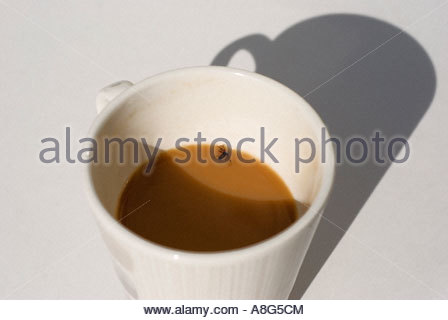 A dead fly in a cup of tea - Stock Photo