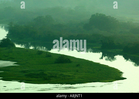 Misty morning at Rio Chagres in Soberania national park, Republic of Panama. - Stockfoto