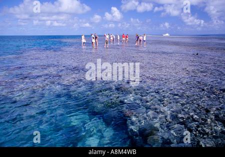 Tourists walking on reef Great Barrier Reef N Queensland Australia horizontal  - Stock Photo