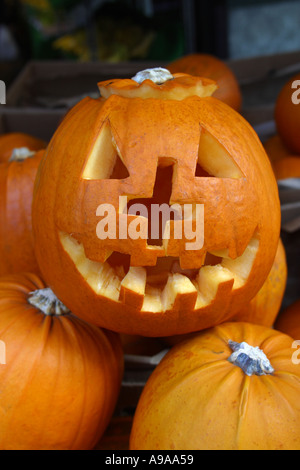 Halloween Pumpkin Borough Market London - Stock Photo