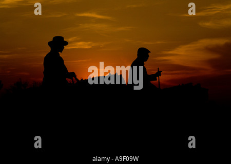 girl and horse silhouette with sunset stock photo royalty free image 137813750 alamy. Black Bedroom Furniture Sets. Home Design Ideas
