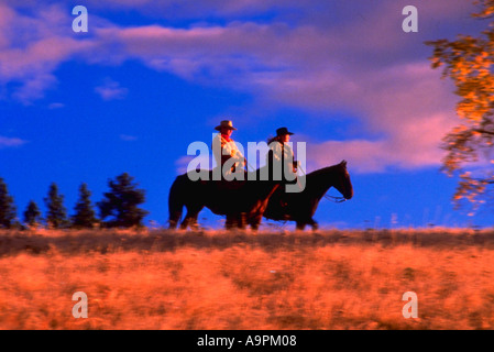 Cowboy and cowgirl on horses - Stock Photo