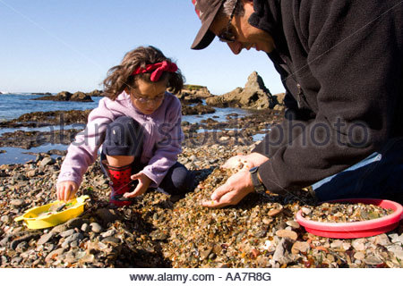 Man playing with daughter on rocky beach - Stock Photo
