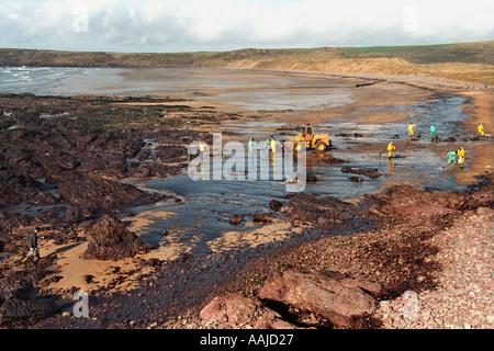 Water Contamination Beach Haven West