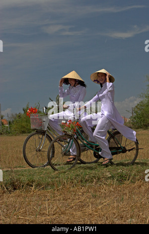 Two young women in conical hats and traditional white ao dai costume ride bicycles on path rice fields near Phan - Stock Photo