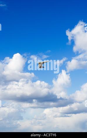 Hang gliding - Stock Photo