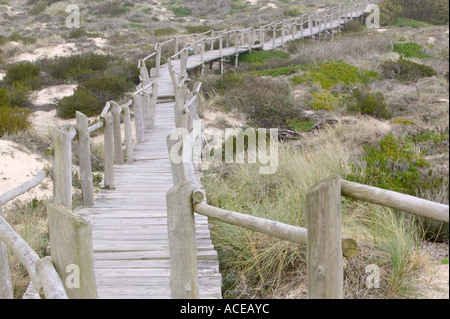 elevated board walk on a nature reserve near Aviero, portugal - Stock Photo