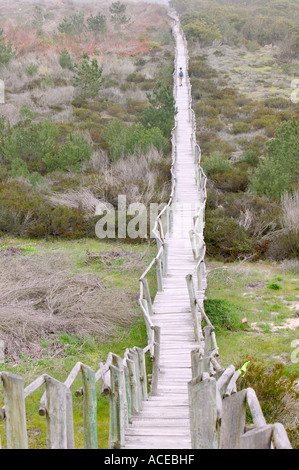 trail boards on a nature reserve near Aviero, Portugal - Stock Photo