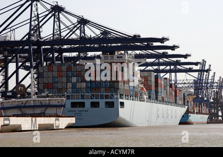 six cranes unloading containers - Stock Photo