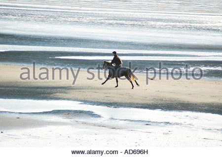 Rider on pony or horse cantering, eastwards on East Wittering sands, December - Stockfoto
