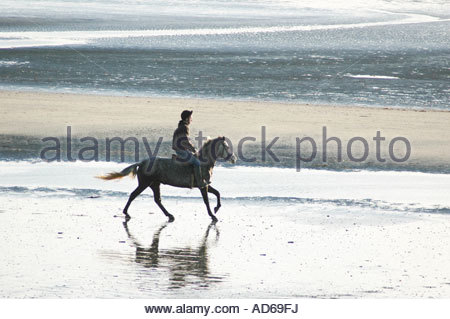 Rider on pony or horse trotting westwards along East Wittering sands, West Sussex, December - Stockfoto
