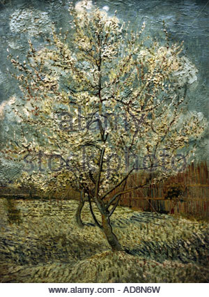 'fine arts, Gogh, Vincent van, painting, 'fruit tree in bloom', oil on canvas, museum, Amsterdam,' - Stock Photo