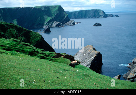 Hermaness Unst Shetland Islands most northerly point of UK - Stock Photo