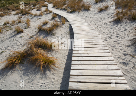 New Zealand South Island Haast Wooden boardwalk over sand dunes near Ship Creek along western coastline - Stock Photo