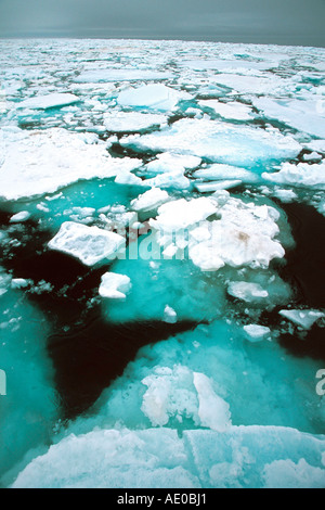 drift ice pack ice ice field actic ocean Treibeis Packeis Eisfeld Arktis Ozean Svalbard Spitzbergen Norway Norwegen - Stock Photo