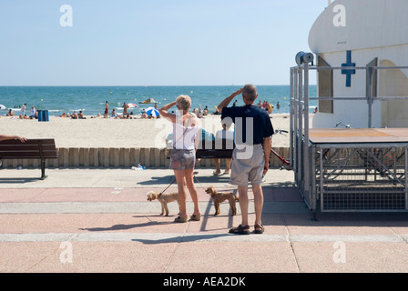 a rear view of two people and their small dogs standing on a beach promenade looking out to see - Stock Photo