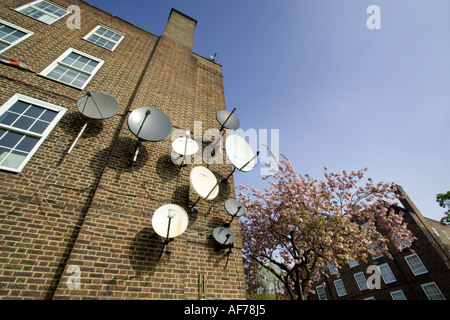 satellite dishes - Stock Photo