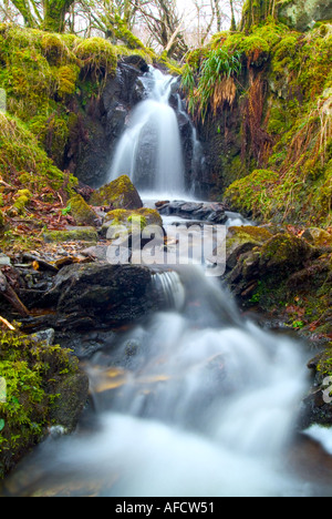 scottish burn flowing in moss covered rocks - Stockfoto