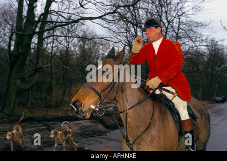 Huntsman of the Essex Hunt sounds his horn - Stock Photo