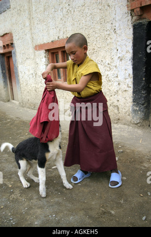 Child monk playing with a dog in Lamayuru, Ladakh, India - Stock Photo