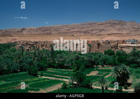 geography / travel, Morocco, Tinerhir oasis towm, city ... Oasis Geography
