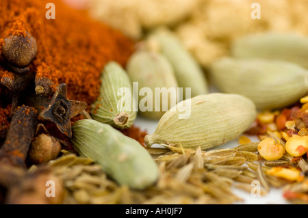 A selection of spices against a white background including cumin seeds cardamom pods cloves paprika chilli seeds - Stockfoto