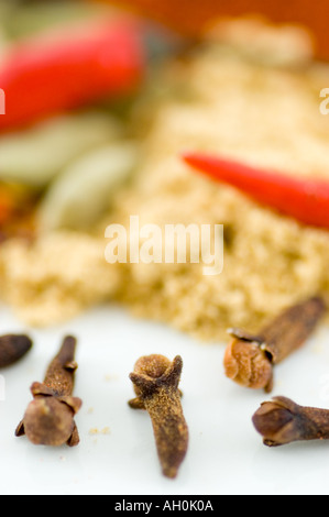 A selection of spices and birds eye chilli against a white background - Stockfoto