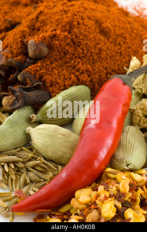 A selection of spices with chilli against a white background - Stockfoto