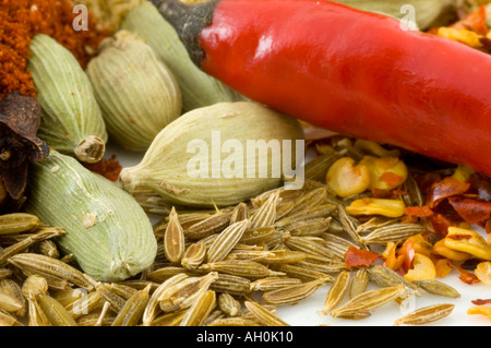 A selection of spices including cloves against a white background - Stockfoto